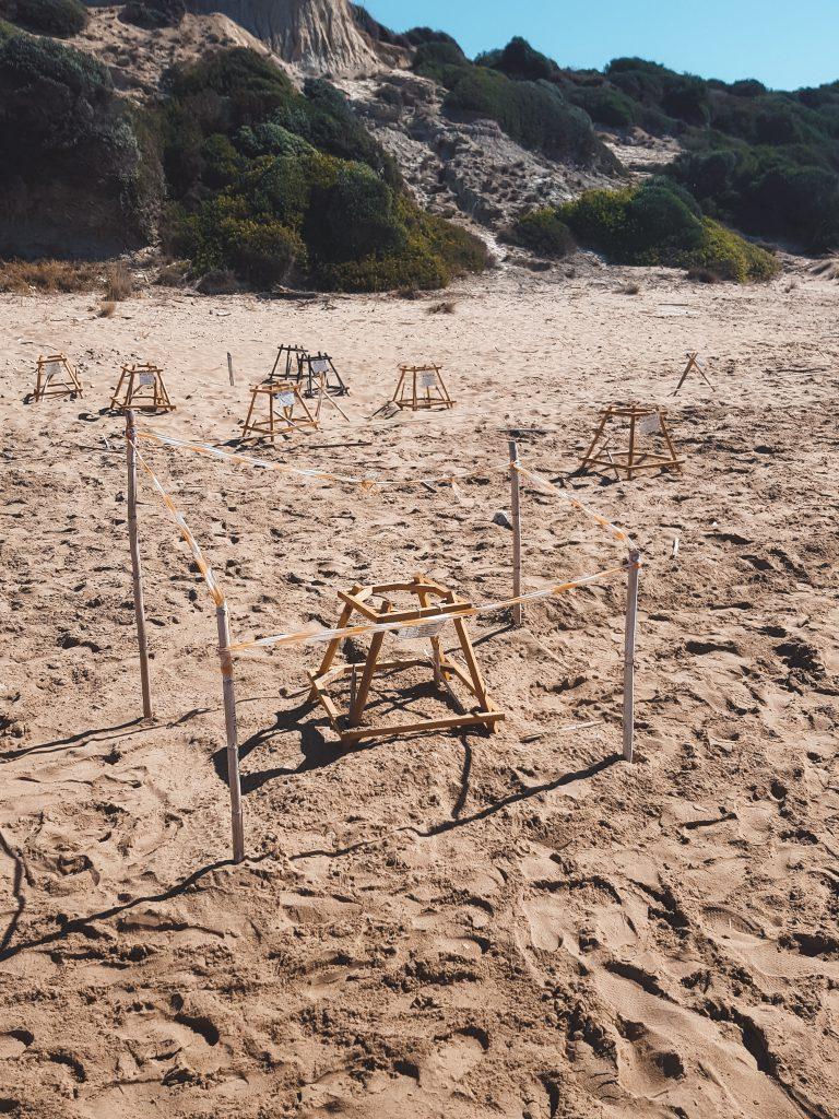 Gerakas beach broedplaats schildpad Zakynthos