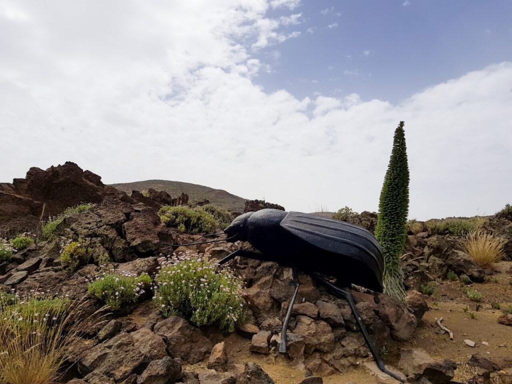 bezoekerscentrum el Teide