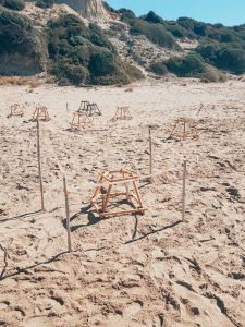 schildpaddenafzetting Gerakas beach