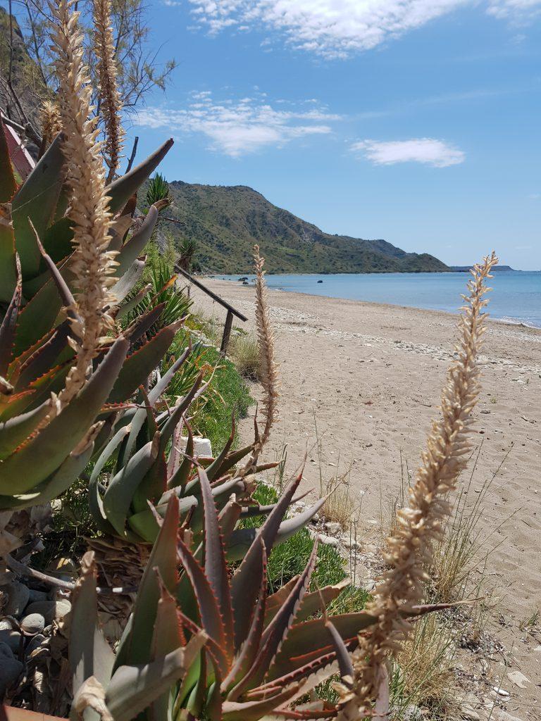 Dafni beach uitzicht
